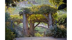 The Huntington Library, Art Collections and Botanical Gardens - San Marino, CA Los Angeles Library, Cool Places To Visit, Places To Go, Huntington Library, City Of Angels, Public Garden, Amazing Gardens, Beautiful Gardens, Botanical Gardens