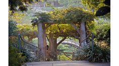 The Huntington Library, Art Collections and Botanical Gardens - San Marino, CA