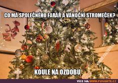 Jokes, Christmas Tree, Lol, Humor, Holiday Decor, Funny, Teal Christmas Tree, Husky Jokes, Humour