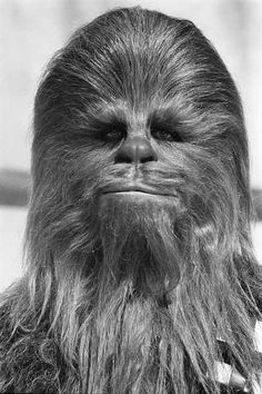 Image result for chewbacca portrait