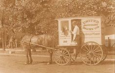 CHICAGO – AUSTIN – UNITED SANITARY DAIRY – 5835 SOUTH BLVD – DRIVER AND WAGON – 1907
