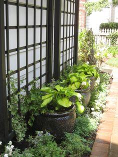 Narrow foundation garden with pots and trellis.