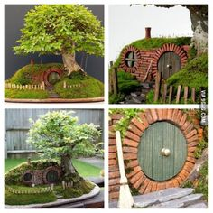 Hobbit Home Bonsai Artwork