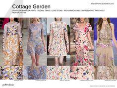 Fashion + Trends