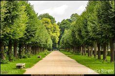 Schlosspark Charlottenburg (August 2017) #Charlottenburg #Berlin #Deutschland #Germany #SchlossparkCharlottenburg #biancabuergerphotography #igersgermany #igersberlin #IG_Deutschland #IG_berlincity #ig_germany #shootcamp #pickmotion #berlinbreeze #diewocheaufinstagram #berlingram #visit_berlin #canon #canondeutschland #EOS5DMarkIII #5Diii #landscape #Landschaft #Sightseeing #Park