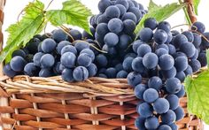 grapes for mac computers 1920x1200