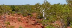Our Short Time in the Pilbara
