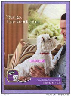 Cesar Dog Food Magazine Ad Advertising - delcampe.fr