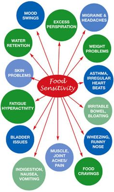 Food sensitivities can cause a variety of uncomfortable symptoms, but did you know they can also cause acne? Are food sensitivities causing yours? Food Intolerance Test, Food Sensitivity Testing, Food Allergies, Food Allergy Symptoms, Food Cravings, Natural Healing, Health Tips, Gut Health, Acupuncture