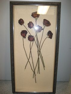 Real dried roses in a shadow box