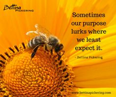 Sometimes our purpose lurks where we least expect it.- Bettina Pickering #purpose #dialaguru