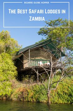 The Best Safari Lodges in Zambia: Find the Hidden Gems!