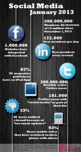 Social media January 2013 /  Sosyal Medya Ocak