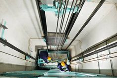 Ensure safety for your passengers #ElevatorMaintenance -http://www.sulekha.com/blogs/common-tips-for-elevator-maintenance_625540?utm_source=pinterest&utm_medium=categories