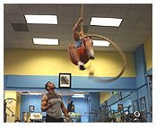 House of personal Trainers, LA Gym, Gym in Los Angeles, Shape it Fitness, Amir Gym, Amir Assad, Boxing, Boot camp, Lose Weight, Private Gym, Best Gym in LA
