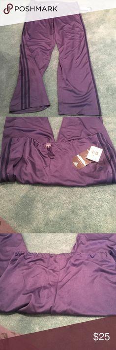 Purple Adidas Sweatpants Size XL NWT . Adidas Pants Track Pants & Joggers