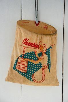 I sooo remember this hanging on the clothes line, holding the clothes pins.