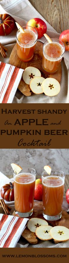 Harvest Shandy, spiced apple cider and pumpkin beer are the perfect combination for this easy 2 ingredients cocktail {wine glass writer} Easy Drink Recipes, Best Cocktail Recipes, Easy Cocktails, Beer Recipes, Punch Recipes, Apple Recipes, Cocktail Drinks, Pumpkin Recipes, Yummy Drinks
