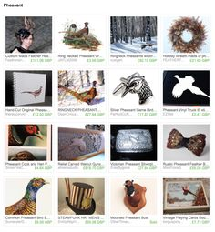 Etsy treasury of artworks inspired by pheasants