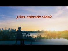 La declaracion de Cristo de los últimos días ¿Has cobrado vida? | Iglesia de Dios Todopoderoso #Dios  #LaPalabraDeDios  #Cordero #Salvador #Creador