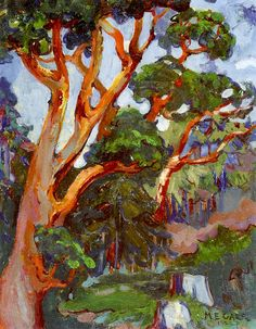 """"""" Emily Carr (Canada 1871-1945) Arbutus Tree (1922) oil on canvas 46 x 36 cm National Gallery of Canada, Ottawa """""""