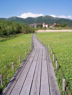 Hakone Botanical Garden and Wetlands, Japan.