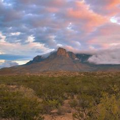 ✯ Guadalupe Mountains - West Texas