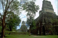 Templo II y al fondo el Gran Jaguar o Templo I, en el parque Tikal, Petén, Guatemala Tikal, Jaguar, Maya Photo, Mount Rushmore, Waterfall, Things To Sell, City, Building, Travel