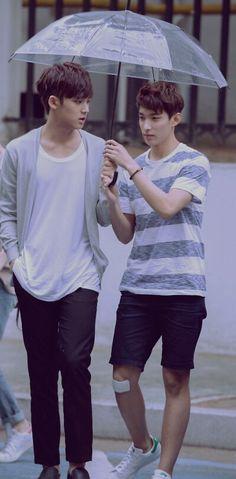 Mingyu & DK