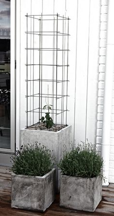 Concrete planters elevate plantings and anchor the landscape - trellis made from stainless steel reinforcement mesh Garden Trellis, Balcony Garden, Garden Planters, Hops Trellis, Wire Trellis, Concrete Planters, Vertical Gardens, Garden Projects, Garden Inspiration