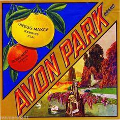 Sebring-Florida-Avon-Park-Orange-Citrus-Fruit-Crate-Label-Art-Print