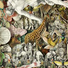 Libros calados, por Alexander Korzer-Robinson > Choosa.net