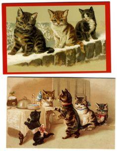 Xmas cat cards