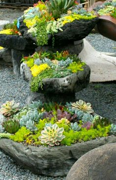 Beet mit steinen  beet mit steinen – reimplica | Garten | Pinterest