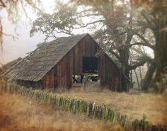 Fine Old Barn,A Signed Fine Art Photograph by gildinglilies, $20.00