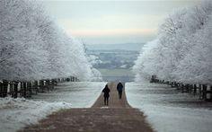Dyrham Park (National Trust) near Bath