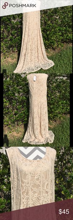"""Ladies Plus Sz. Nude Lace Dress Beautiful nude lace fully lined long dress by Candalite. Bust measures 22"""" across laying flat @ is 60"""" long, shoulder to hem. 100% poly, hand wash hang dry. NWT Candalite Dresses"""