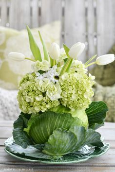 Spring Green Cabbage Vase Floral Arrangement for St. Patrick's Day - DIY Spring Green Cabbage Vase Floral Arrangement for St. Patrick's Day DIY