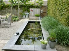 Minimalist garden design with koi fish pond adorned, koi garden Small Water Features, Water Features In The Garden, Garden Features, Outdoor Ponds, Ponds Backyard, Garden Ponds, Herb Garden, Koi Fish Pond, Fish Ponds