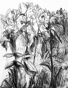 jim-dine-flowers-i3.jpg Jim Dine