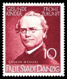 Gregor Mendel auf Briefmarke von 1939 Stamp World, Danzig, Love Stamps, Stamp Collecting, German Stamps, Postage Stamps, Nobel, Ebay, Koch