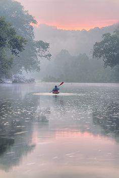 Gasconade River in Missouri Fishing Store, Sport Fishing, Missouri, Shady Tree, Wild Birds, Kayaking, Canoeing, Photos, Pictures