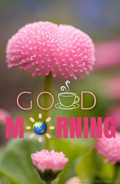 Good Morning Life Quotes, Good Morning Friends Images, Morning Quotes Images, Good Morning Messages, Morning Pictures, Good Morning Thursday, Good Morning Happy, Good Morning Greetings, Good Morning Wishes