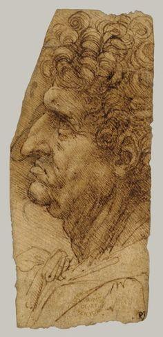 Leonardo da Vinci - Head of a Man in Profile to Left