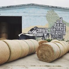 """""""In June I went on a street art mission to Emilia Romagna region in Italy and was amazed by what I found there. A project which surprised me the most is Sagra della StreetArt"""" - Instagram by smaracuja"""