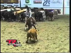 TR Dual Rey 2003 NCHA Derby Open. For all of you who don't know what cutting is - this is the video to watch ;). Amazing little horse!  2003 Leading Money Earner 2008 Freshman Sire of the Year 2009 #1 Second Crop Sire 2010 Top Ten Sire with only 2 crops! - Sire of over $1 Million+ The Phenomenal Performer is now the Phenomenal Sire! For more info visit: www.sdpbuffaloranch.com
