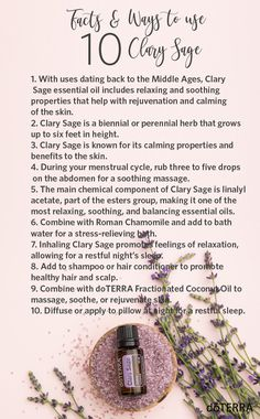 Clary Sage is known as one of the most relaxing, soothing, and balancing essential oils when used aromatically and internally. Check out other facts & ways you can benefit from using Clary Sage essential oil.