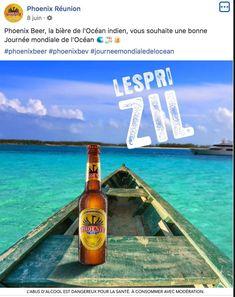 Phoenix Réunion Corona Beer, Beer Bottle, Drinks, International Cat Day, Starry Nights, Calendar, Alcohol, Drinking, Beverages
