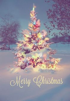 Merry Christmas & a Happy New Year :)