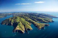 i need to visit new zealand Akaroa Harbour and Banks Peninsula, Canterbury, South Island, New Zealand New Zealand Cruises, New Zealand Travel, Living In New Zealand, Visit New Zealand, Places To Travel, Places To See, Christchurch New Zealand, New Zealand Landscape, New Zealand South Island